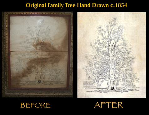 1854 Hand Drawn Family Tree